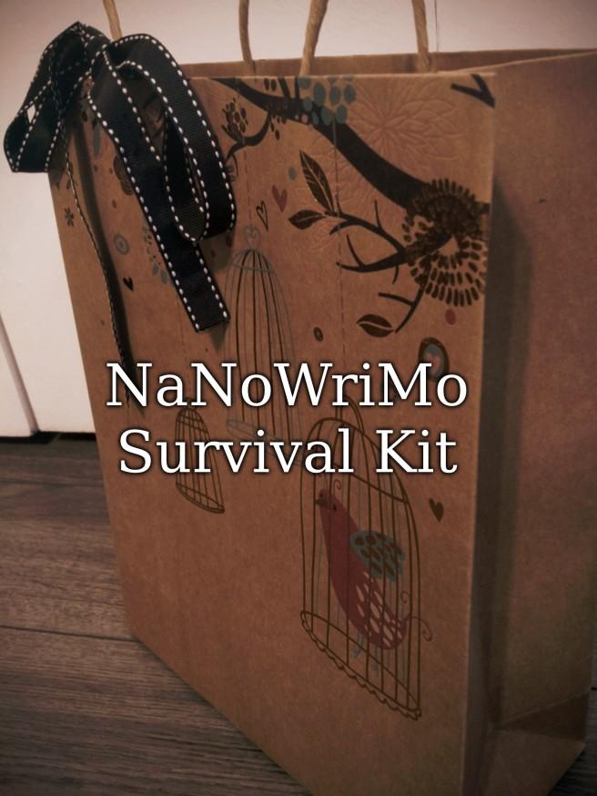 NaNoWriMo Survival Kit.jpg