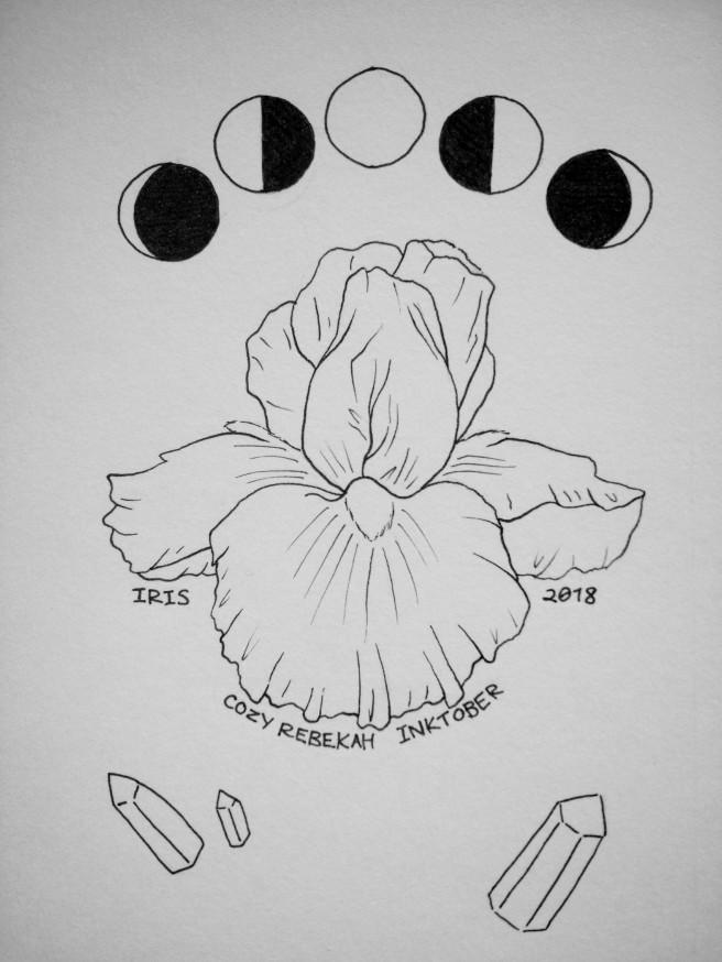 Inktober Day 17 - Iris by Cozy Rebekah
