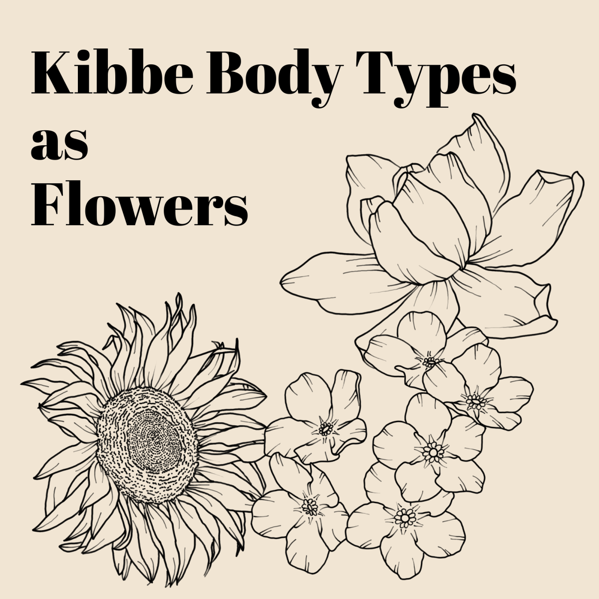 """A line art drawing of some forget-me-nots, a gardenia, and a sunflower, with the text """"Kibbe Body Types as Flowers"""" above it"""