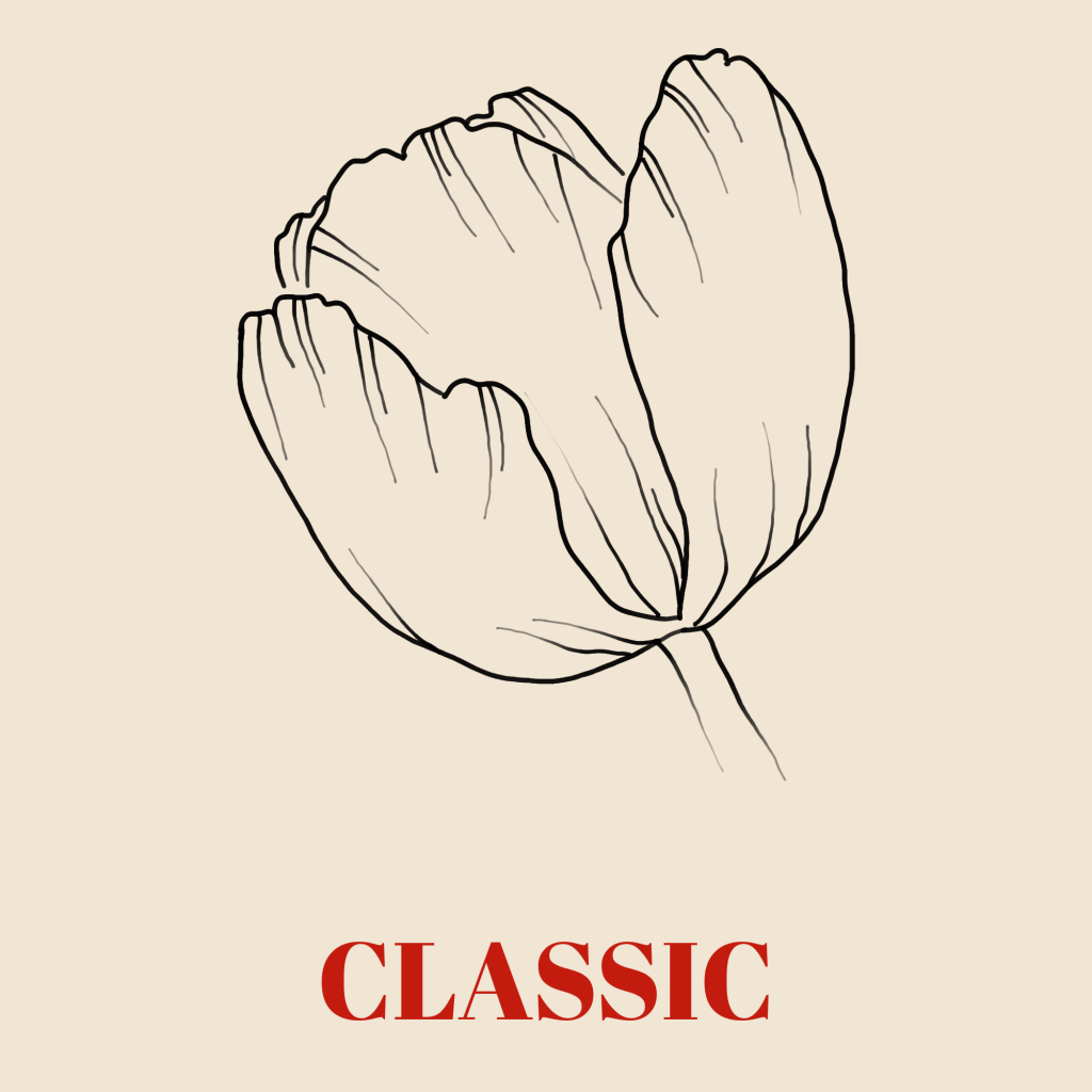A line art drawing of a tulip set against a pale background with the word 'Classic' written underneath it in red text.