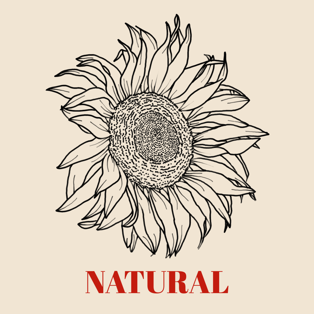 A line art drawing of a sunflower set against a pale background with the word 'Natural' written underneath it.