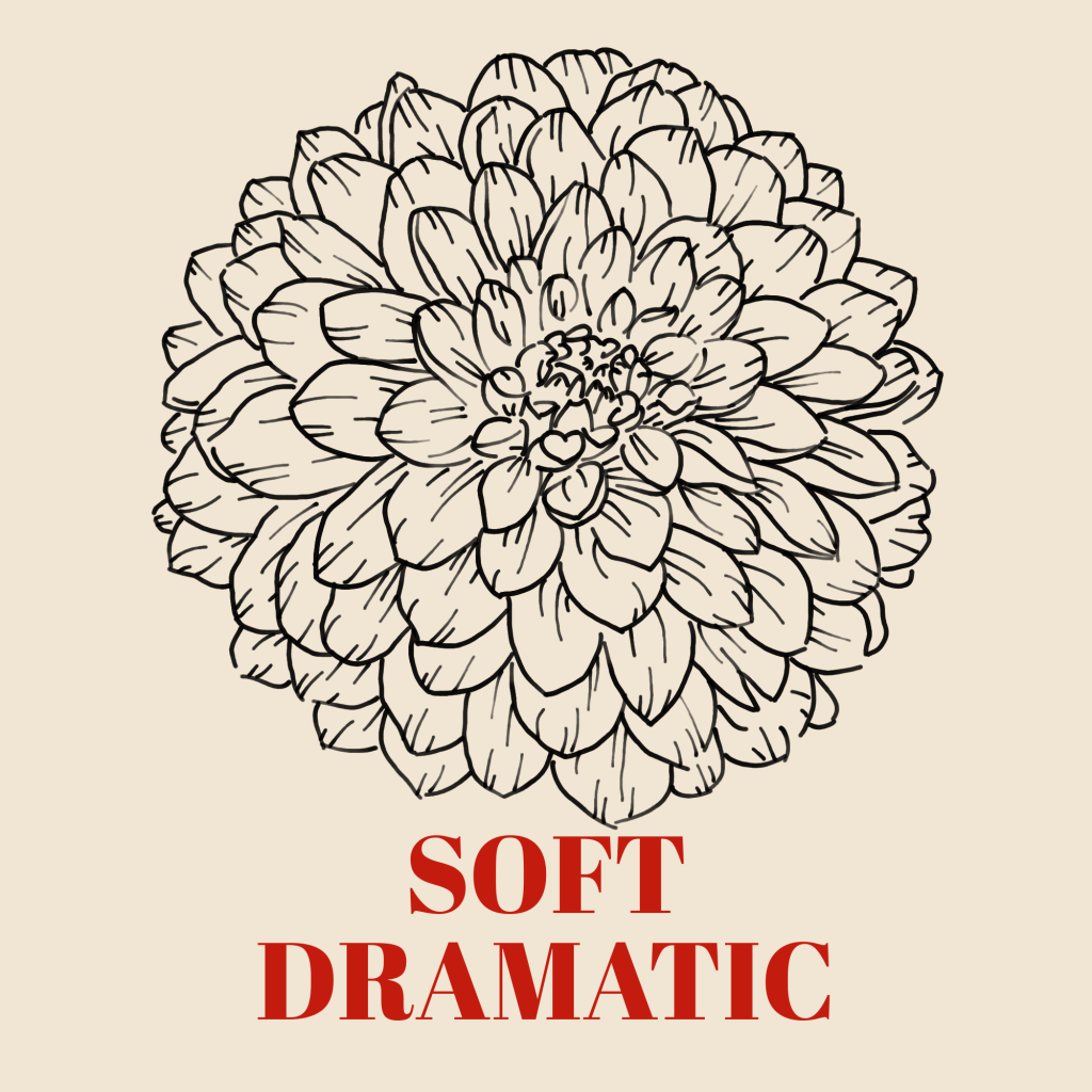 A line art drawing of a dahlia set against a pale background with the words 'Soft Dramatic' underneath it in red text.
